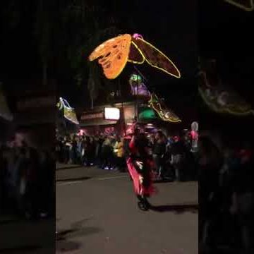 Muses parade video thumbnail