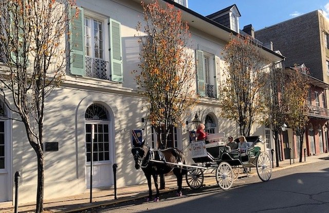 Traditional Horse & Carriage in New Orleans